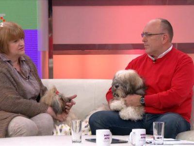 """HRT: O terapijskim psima u Poliklinici u emisiji """"Dobro jutro Hrvatska"""""""