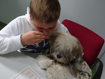 Therapy Dogs Evie and Heidi Started Working with Children at the Centre