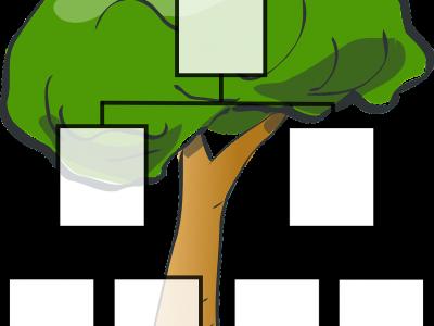 #ostanidoma: Nemamo se čime igrati? Istražimo djetetovo porijeklo, izradimo obiteljsko stablo
